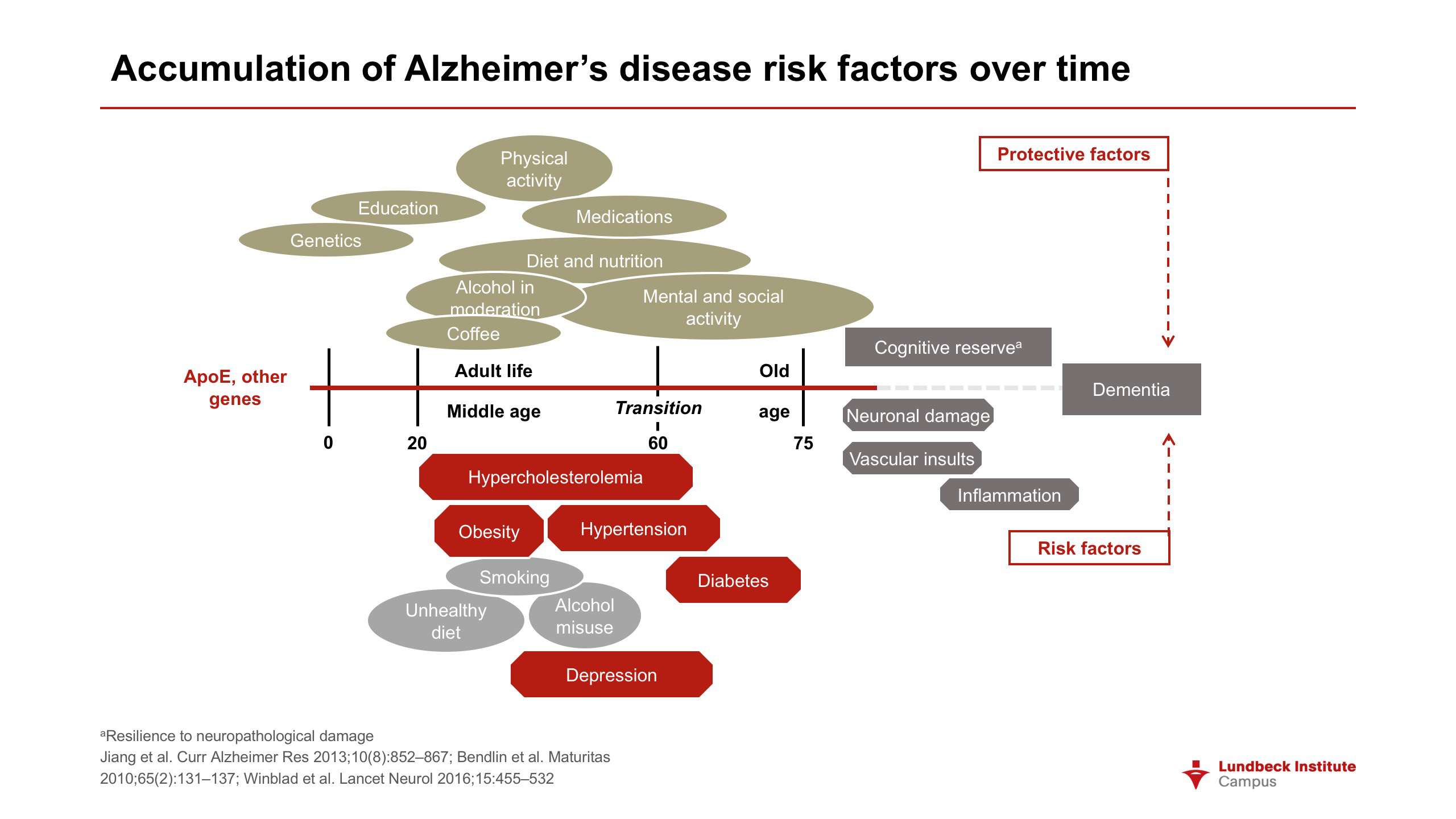 Accumulation of Alzheimer's disease risk factors over time